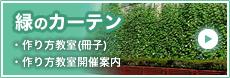 緑のカーテン(作り方教室・作り方教室開催案内)